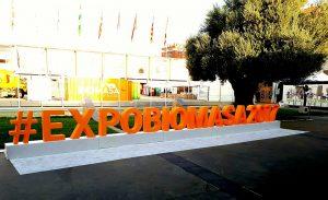 Chimeneas Molina en Expobiomasa 2017